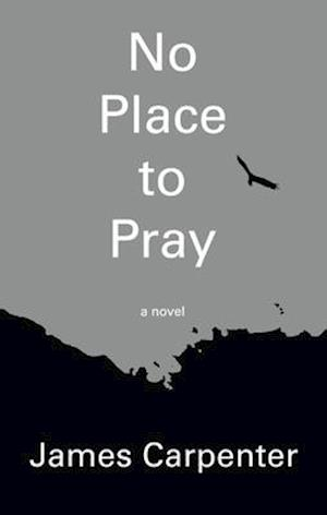 Bog, paperback No Place to Pray af James Carpenter