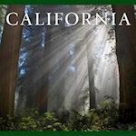 California af Tanya Lloyd Kyi