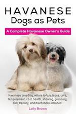 Havanese Dogs as Pets