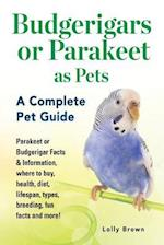 Budgerigars or Parakeet as Pets