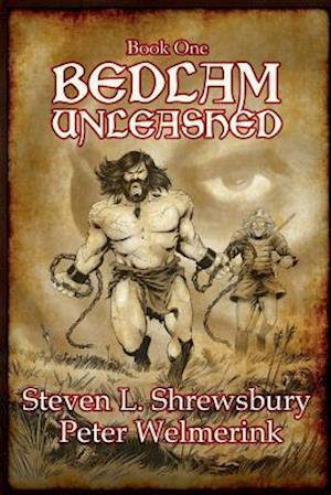 Bog, paperback Bedlam Unleashed af Peter Welmerink, Steven L. Shrewsbury