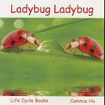 Ladybug Ladybug af Cammie Ho