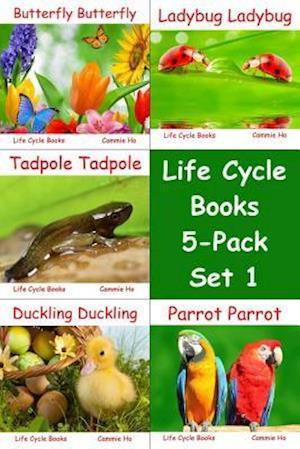 Bog, paperback Life Cycle Books 5-Pack Set 1 af Cammie Ho