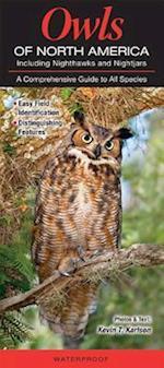 Owls of North American Including Nighthawks and Nightjars