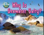 Why Is Seawater Salty? (Drip Drip Drop Earths Water)