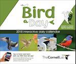 Bird-A-Day 2018 Daily Calendar