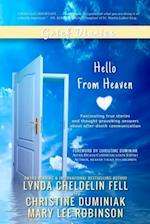 Grief Diaries af Mary Lee Robinson, Christine Duminiak, Lynda Cheldelin Fell