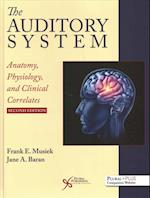 The Auditory System