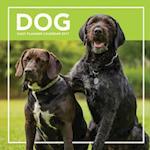 Dog Daily Planner Calendar 2017