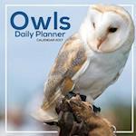 Owls Daily Planner Calendar 2017