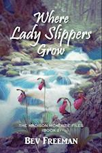 Where Lady Slippers Grow: The Madison McKenzie Files (Book 2) af Bev Freeman