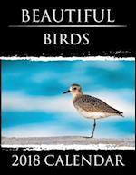Beautiful Birds - 2018 Calendar
