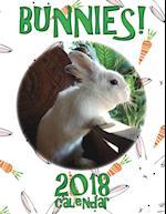 Bunnies! 2018 Calendar (UK Edition)