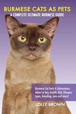 Burmese Cats as Pets