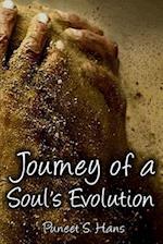 Journey of a Soul's Evolution