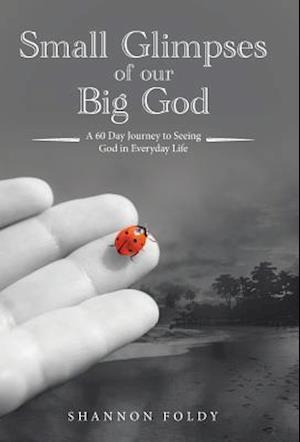 Small Glimpses of Our Big God: A 60 Day Journey to Seeing God in Everyday Life