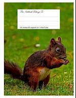 Composition Notebook for School, 8.5.X 11, Wide Ruled, Love Squirrel