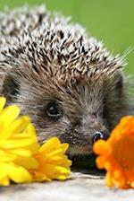 A Sweet Hedgehog with Some Flowers Cute Pet Portrait Journal