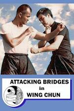 Attacking Bridges in Wing Chun