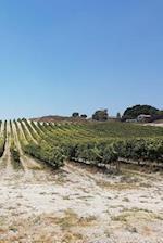 Notebook Vinyard of Grapes Looking Across the Fields