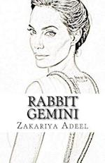 Rabbit Gemini