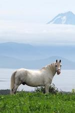 White Horse in a Green Field Equine Journal