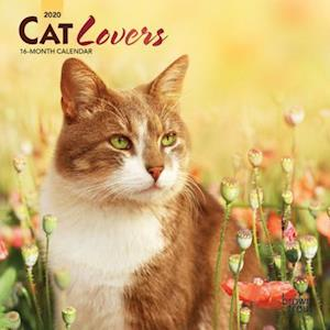 Cat Lovers 2020 Mini Wall Calendar