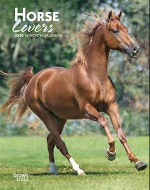 Horse Lovers 2020 Diary