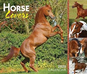 Horse Lovers 2020 Day-to-Day Calendar