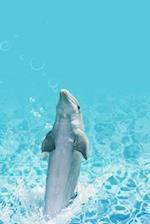 Dolphin Dance Notebook