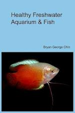 Healthy Freshwater Aquarium & Fish