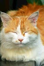 Happy Cat Notebook