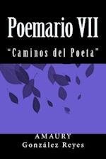Poemario VII