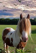 Pretty Pony Needs a Haircut Journal
