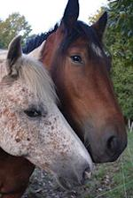 Two Friendly Horses Journal