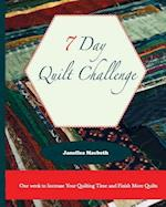 The 7 Day Quilt Challenge