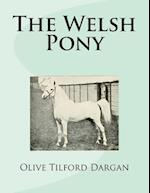 The Welsh Pony