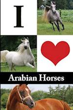 I Love Arabian Horses Journal