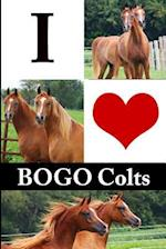 I Love Bogo Colts Journal