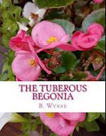 The Tuberous Begonia