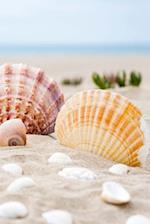 Seashells at the Shore Journal