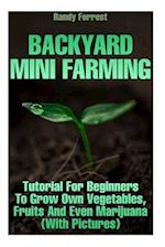 Backyard Mini Farming