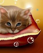 Kitten Composition Book