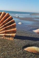 Beach Shells Notebook