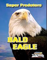 Bald Eagle: (Age 6 and above)