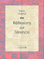 Reflexions sur Terence