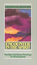 Encounter in the Spirit (RISK BOOK SERIES, nr. 39)