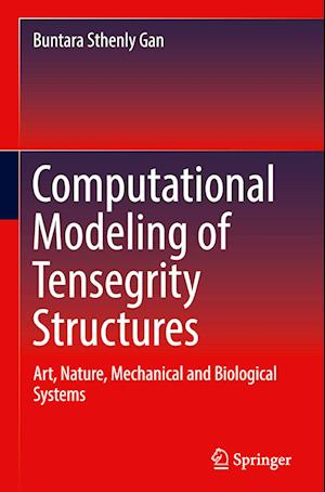 Computational Modeling of Tensegrity Structures