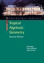 Tropical Algebraic Geometry af Eugenii I. Shustin, Grigory Mikhalkin, Ilia Itenberg