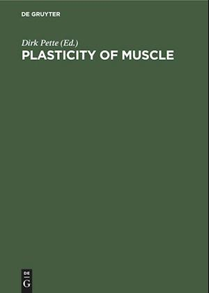 Plasticity of Muscle